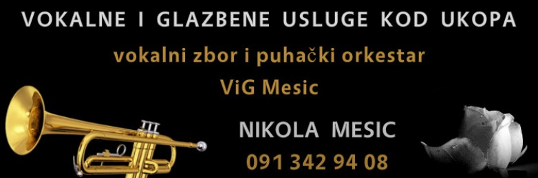 ViG-Mesic