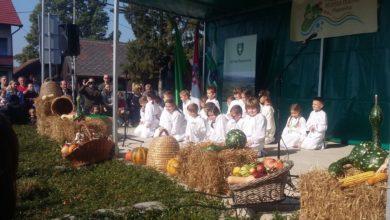 Photo of Festival meda i kruha te izložba gljiva u Pisarovini