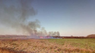 Photo of Požar u Donjoj Kupčini, a gorjelo i u Drvoproizvodu
