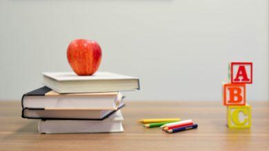 Photo of Doznajemo koliko jaskanske djece se u ponedjeljak vraća u školu i vrtić